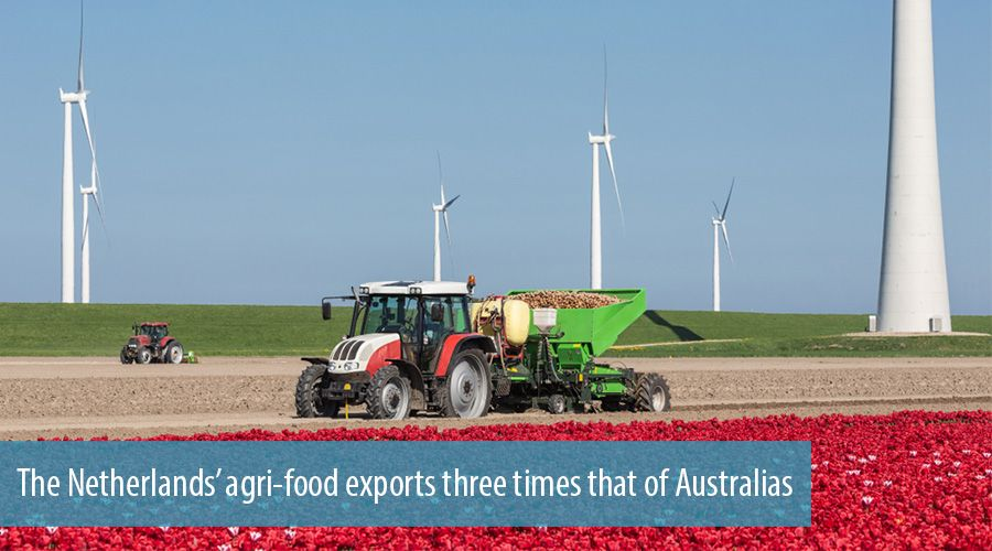 The Netherlands' agri-food exports three times that of Australias