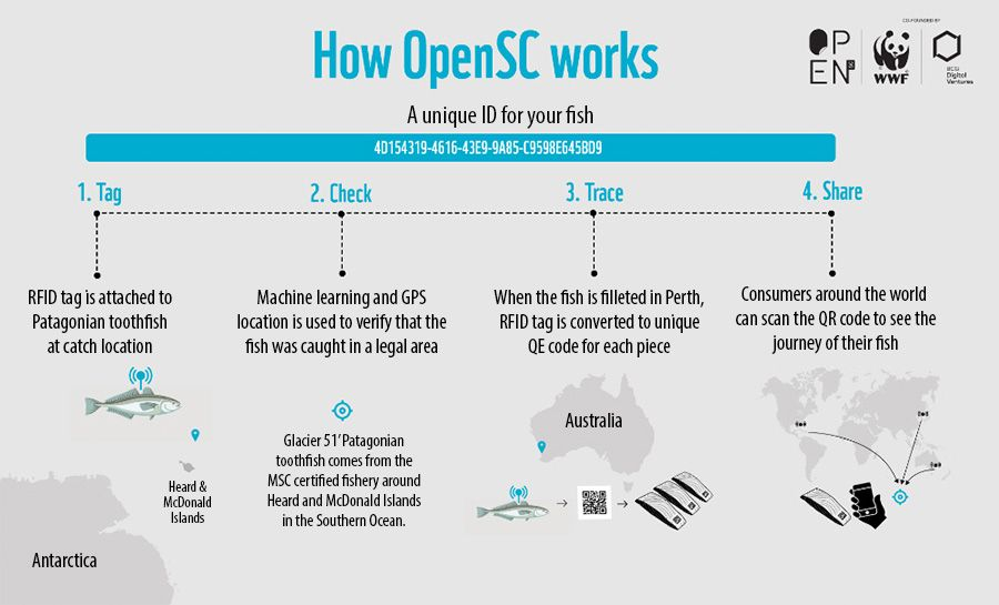 How OpenSC works