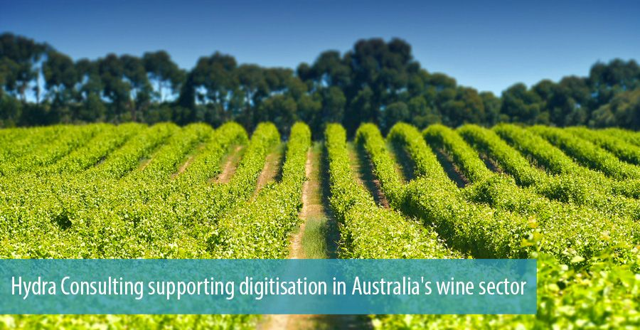 Hydra Consulting supporting digitisation in Australia's wine sector
