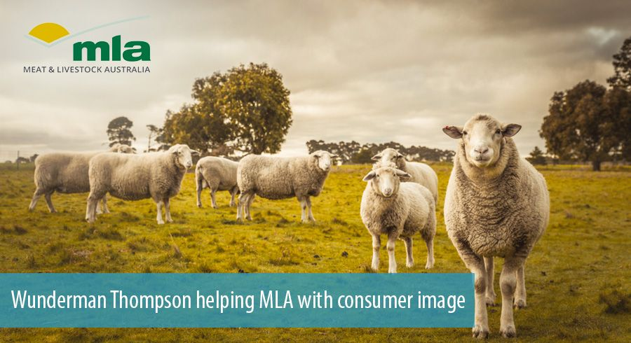 Wunderman Thompson helping MLA with consumer image