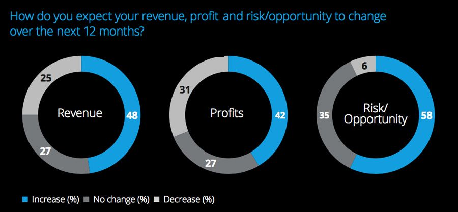 How do you expect your revenue, profit and risk opportunity to change over the next 12 months