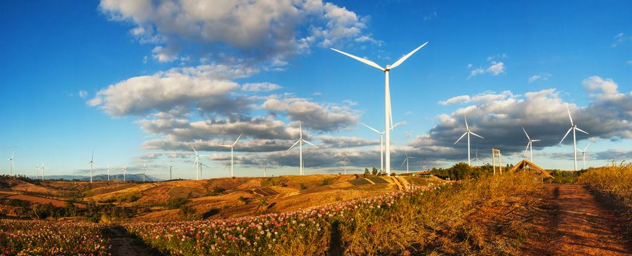 WWF and EY call government to invest $2 billion in renewables