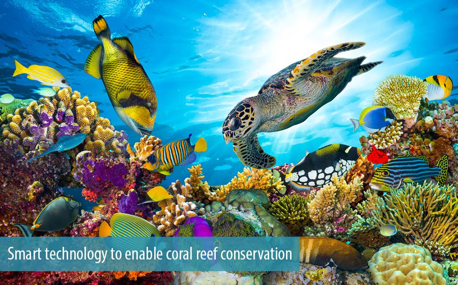 Smart technology to enable coral reef conservation