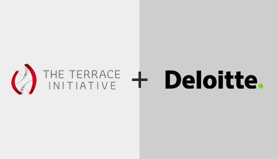 Deloitte bolsters digital capabilities with The Terrace Initiative