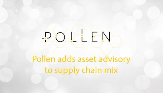 Pollen Consulting adds asset advisory to supply chain mix