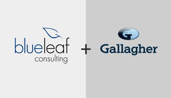 Sydney-based Blueleaf Consulting joins global player Gallagher