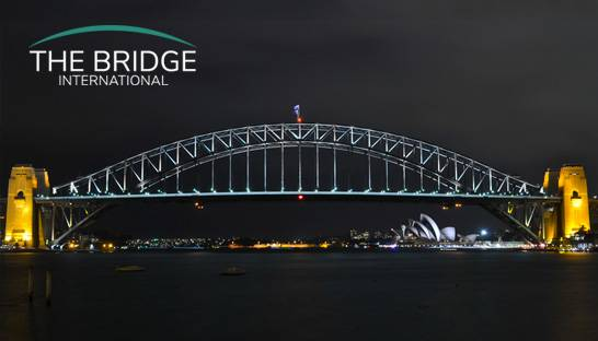 The Brigde International grows to 20 consultants in its first year