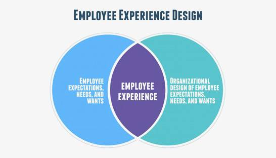 Steps for designing a great employee experience