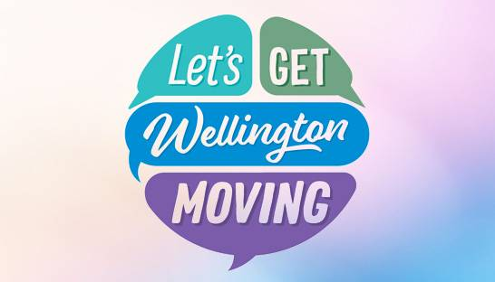 Wellington calls in consultants for review of $6.4 billion programme