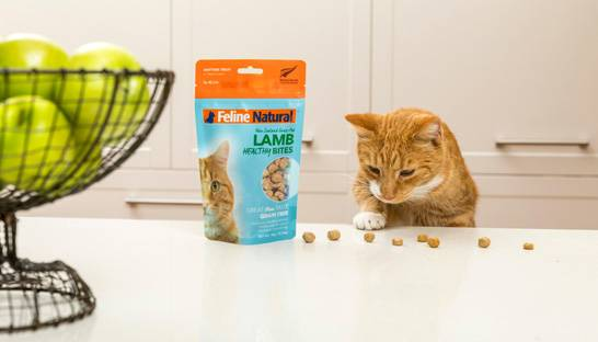 PwC's M&A consultants running Natural Pet Food Group sale