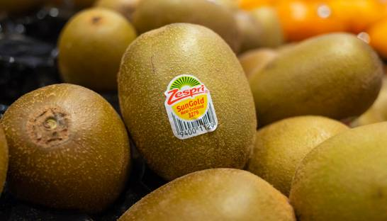 Deloitte, Zag and Sysdoc lead SAP driven overhaul at Zespri