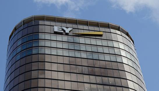 EY appoints 30+ partners in Consulting and Transaction Advisory